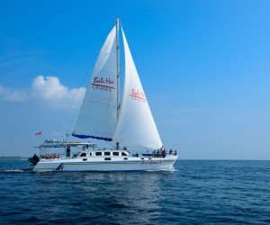 Aristocat-Sailing-new-15-300x250